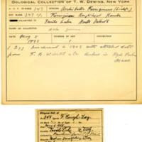 Thomas Wilmer Dewing, egg card # 233