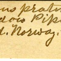 Clinton Mellen Jones, egg card # 394