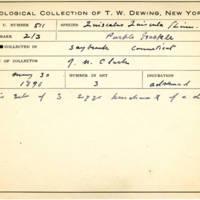 Thomas Wilmer Dewing, egg card # 416