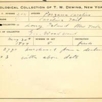 Thomas Wilmer Dewing, egg card # 158
