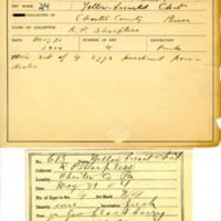 Thomas Wilmer Dewing, egg card # 789u