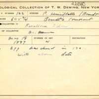 Thomas Wilmer Dewing, egg card # 079
