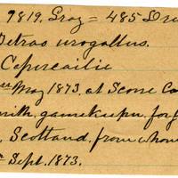 Clinton Mellen Jones, egg card # 082