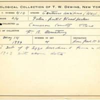 Thomas Wilmer Dewing, egg card # 299