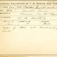 Thomas Wilmer Dewing, egg card # 810u