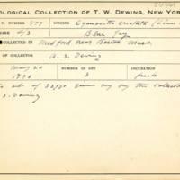 Thomas Wilmer Dewing, egg card # 663u