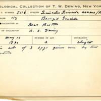 Thomas Wilmer Dewing, egg card # 418