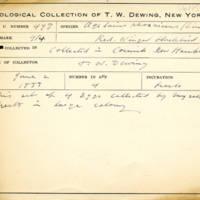 Thomas Wilmer Dewing, egg card # 670u
