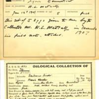 Thomas Wilmer Dewing, egg card # 781u
