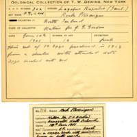 Thomas Wilmer Dewing, egg card # 198