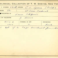 Thomas Wilmer Dewing, egg card # 481