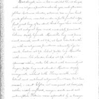The terrestrial Adephaga of Iowa by Fanny Chastina Thompson Wickham, 1895, Page 82