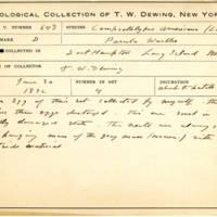 Thomas Wilmer Dewing, egg card # 520
