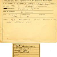 Thomas Wilmer Dewing, egg card # 082
