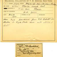 Thomas Wilmer Dewing, egg card # 252
