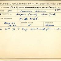 Thomas Wilmer Dewing, egg card # 432