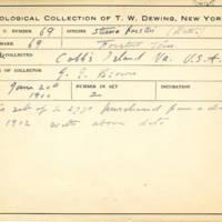 Thomas Wilmer Dewing, egg card # 634u