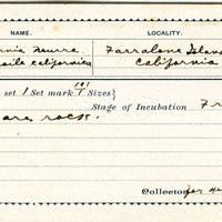 Henry R Taylor, egg card # hrt002u