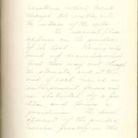 The fertilizing cell, its varying form and behavior by Nelly Peery, 1890, Page 24