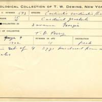Thomas Wilmer Dewing, egg card # 479