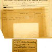 Thomas Wilmer Dewing, egg card # 373
