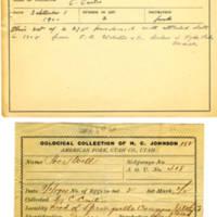 Thomas Wilmer Dewing, egg card # 311