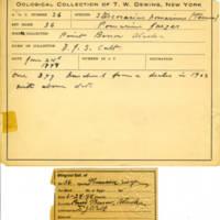 Thomas Wilmer Dewing, egg card # 630u