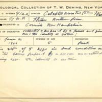 Thomas Wilmer Dewing, egg card # 301
