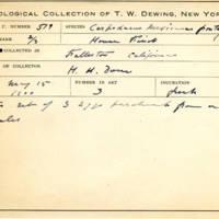 Thomas Wilmer Dewing, egg card # 423