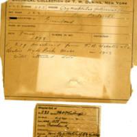 Thomas Wilmer Dewing, egg card # 164