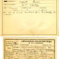 Thomas Wilmer Dewing, egg card # 516