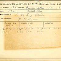 Thomas Wilmer Dewing, egg card # 130