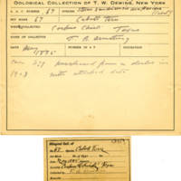 Thomas Wilmer Dewing, egg card # 053