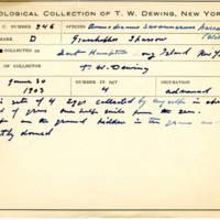Thomas Wilmer Dewing, egg card # 434