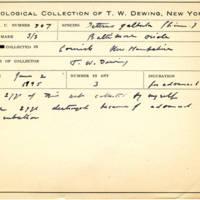 Thomas Wilmer Dewing, egg card # 411