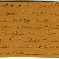 William F. Coultas, egg card # 010