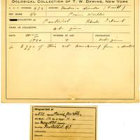 Thomas Wilmer Dewing, egg card # 537