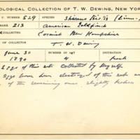 Thomas Wilmer Dewing, egg card # 426