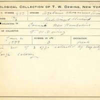Thomas Wilmer Dewing, egg card # 678u