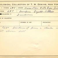Thomas Wilmer Dewing, egg card # 185