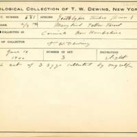Thomas Wilmer Dewing, egg card # 784u