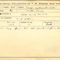 Thomas Wilmer Dewing, egg card # 492