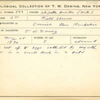 Thomas Wilmer Dewing, egg card # 694u