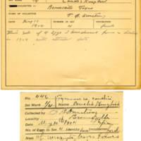 Thomas Wilmer Dewing, egg card # 337