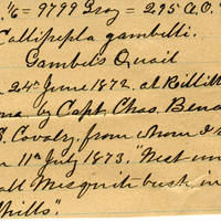 Clinton Mellen Jones, egg card # 266