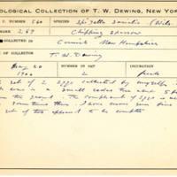 Thomas Wilmer Dewing, egg card # 443