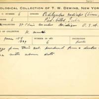Thomas Wilmer Dewing, egg card # 627u