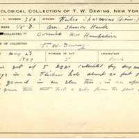 Thomas Wilmer Dewing, egg card # 240