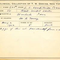 Thomas Wilmer Dewing, egg card # 765u