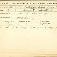 Thomas Wilmer Dewing, egg card # 783u